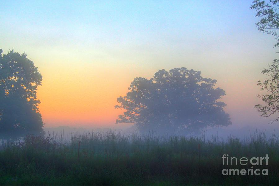 Sun Rise Photograph - Color And Fog by Robert Pearson