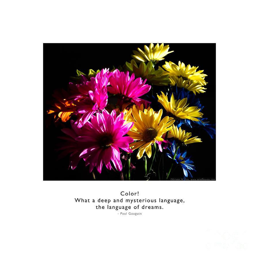 Color Language of Dreams by Kristen Fox