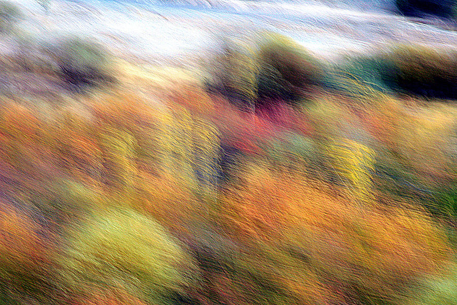Autumn Photograph - Color Play by Robert Shahbazi
