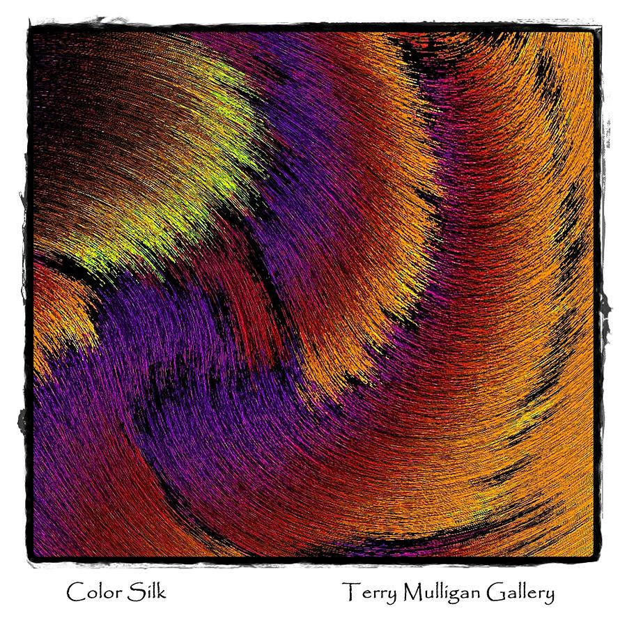 Color Digital Art - Color Silk by Terry Mulligan