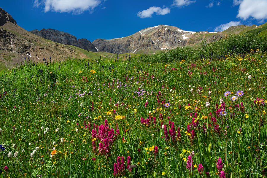 Handies Photograph - Colorado 14er Handies Peak by Aaron Spong