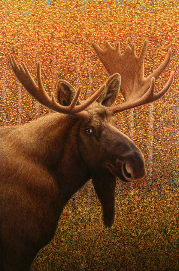 Moose Painting - Colorado Moose by James W Johnson