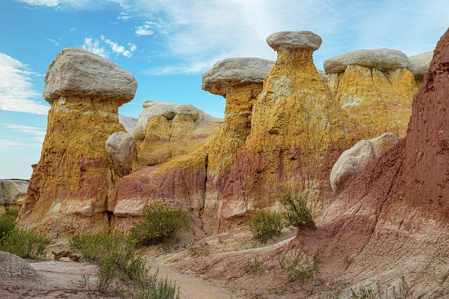 Colorado Paint Mines Formations Photograph