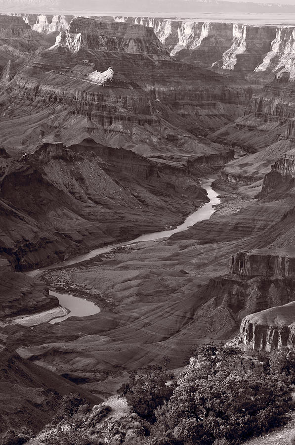 Canyon Photograph - Colorado River At Desert View Grand Canyon by Steve Gadomski