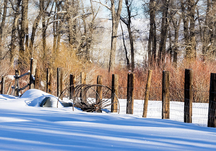 Colorado Winter Snow Scene with old Farming Rake and Rustic Fence by Nadja Rider