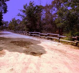 Path Photograph - Colored Path by Rana Adamchick