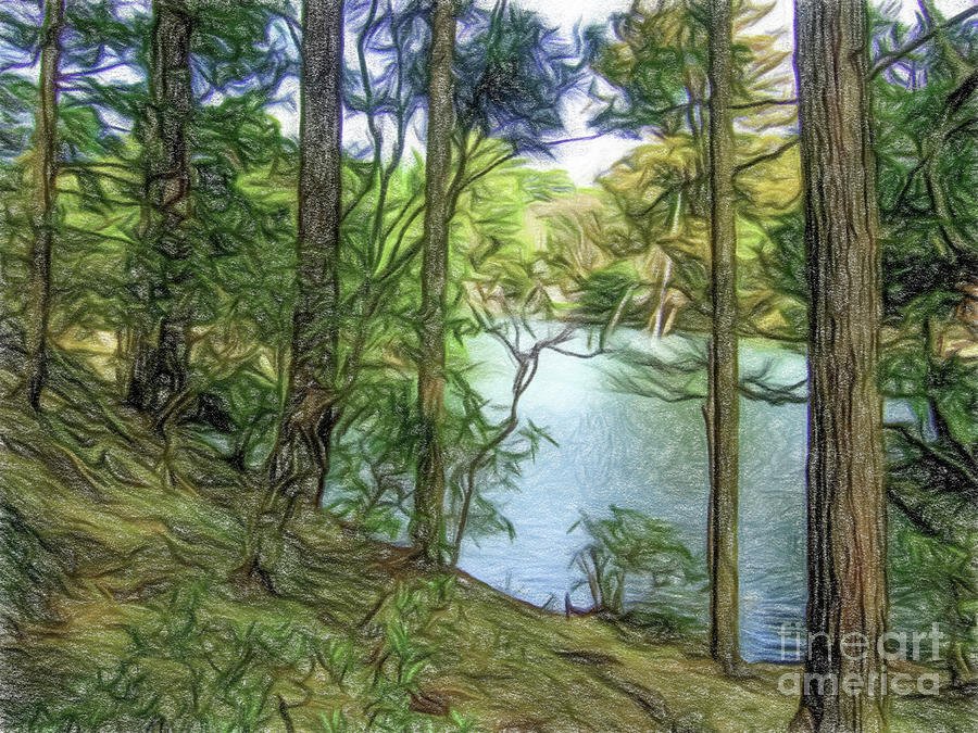 Colored Pencil Drawing The Japanese Garden At Katsura Imperial