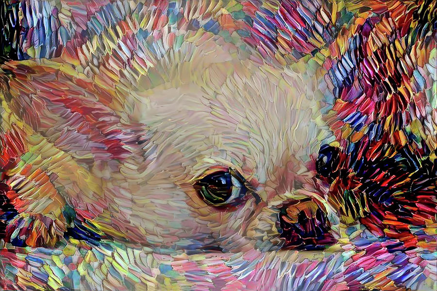 Chihuahua Mixed Media - Colorful Abstract Chihuahua by Peggy Collins