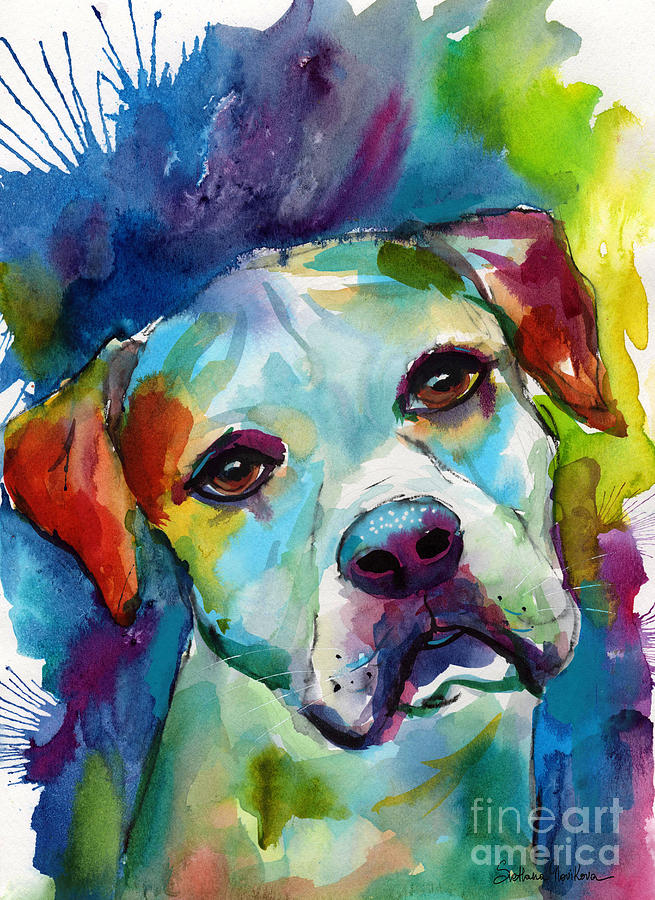 Colorful American Bulldog dog by Svetlana Novikova
