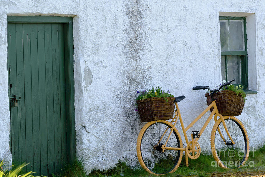 Colorful Bicycles Photograph by Julie Chambers