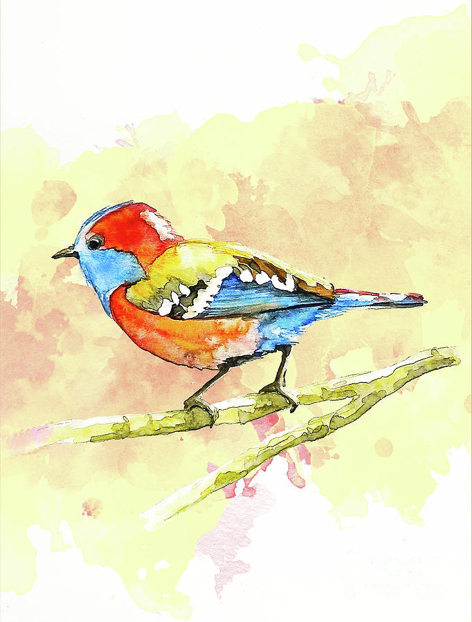 colorful bird on red painting by gallery hermana