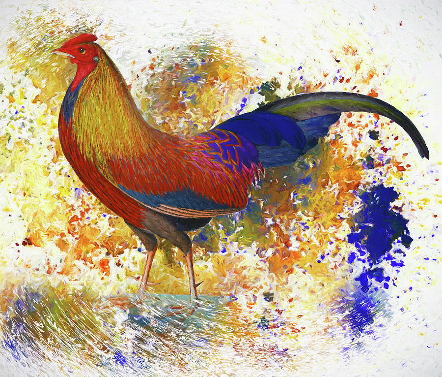 Colorful Chicken Wall Art Mixed Media by Georgiana Romanovna