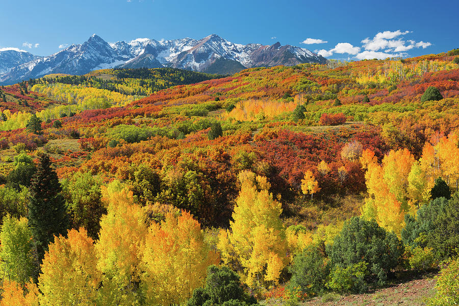 Colorful Colorado At It's Best 2 by John Hoffman