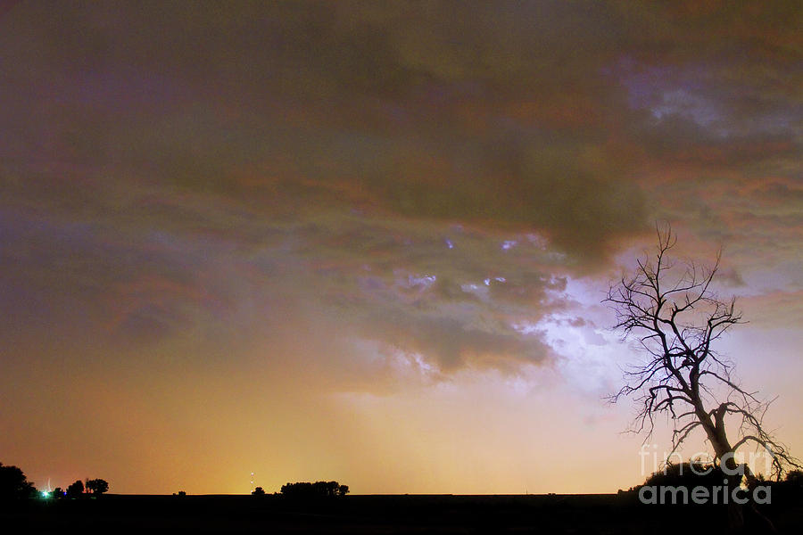 Tree Photograph - Colorful Colorado Cloud To Cloud Lightning Striking by James BO  Insogna