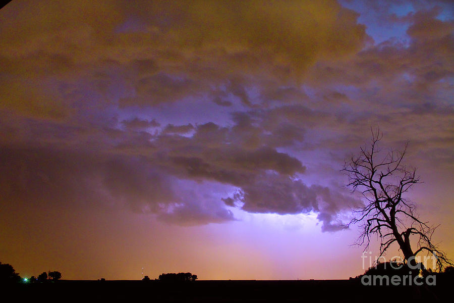 Tree Photograph - Colorful Colorado Cloud To Cloud Lightning Thunderstorm 27 by James BO  Insogna