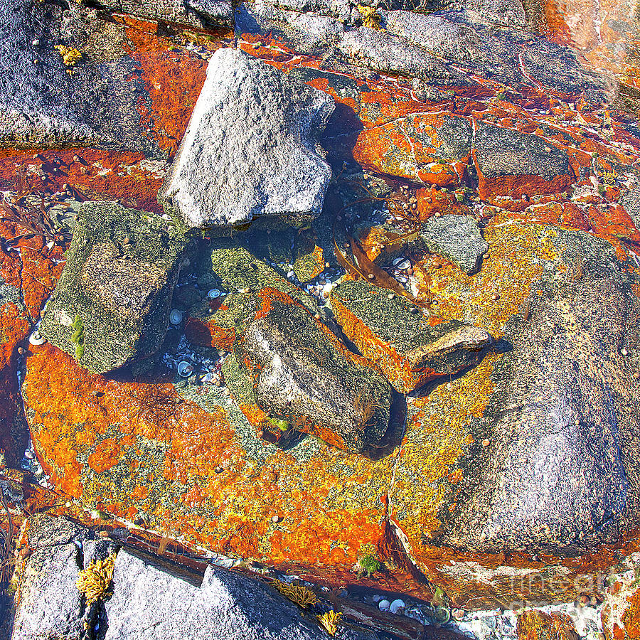 Decorative Photograph - Colorful Earth History by Heiko Koehrer-Wagner