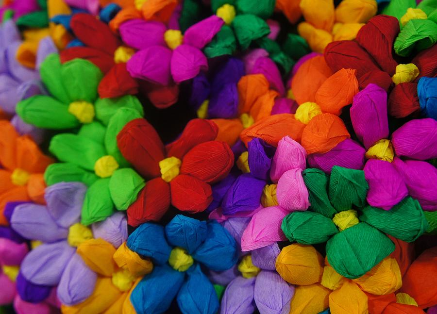 Color Photograph - Colorful Flowers by Art Spectrum