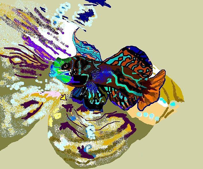 Saltwater Fish Digital Art - Colorful Manderin Fish by Robert Rodriguez