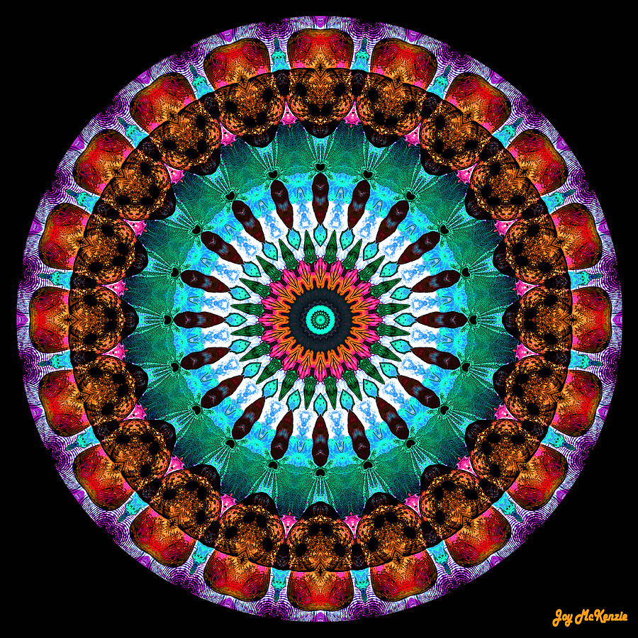 Digital Digital Art - Colorful No. 9 Mandala by Joy McKenzie