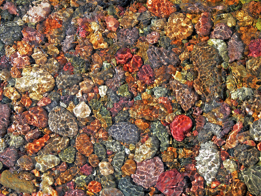 Rock Creek Photograph - Colorful Rocks In Stream Bed Montana by Jennie Marie Schell