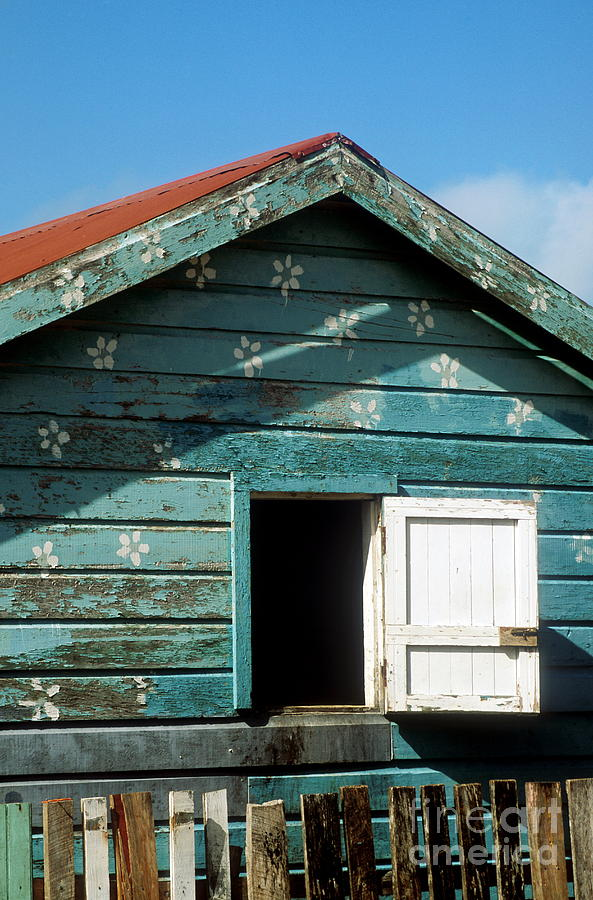 Ambergris Caye Photograph - Colorful Shack by John Greim