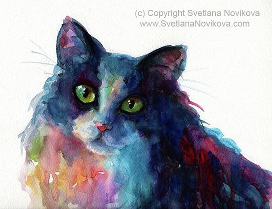 Portrait Photograph - Colorful Watercolor Cat By Svetlana by Svetlana Novikova