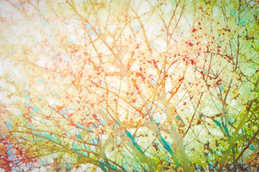 Colors 158 by Pamela Cooper