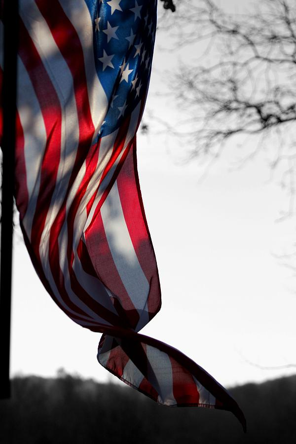 Flag Photograph - Colors In The Wind by Lisa Johnston