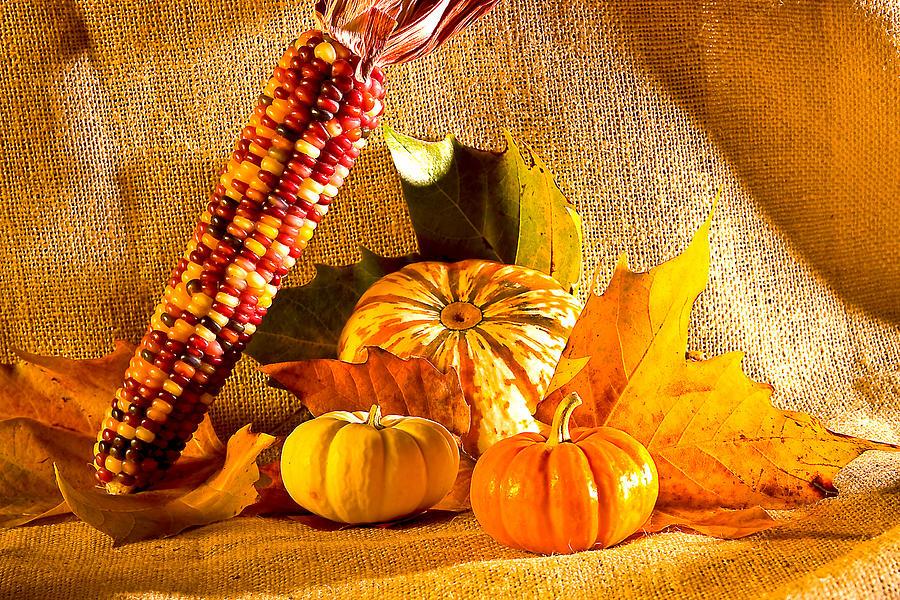 Pumpkins Photograph - Colors Of Autumn by Naman Imagery