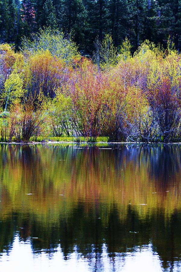 Landscape Photograph - Colors Of Autumn In May by Russell  Barton