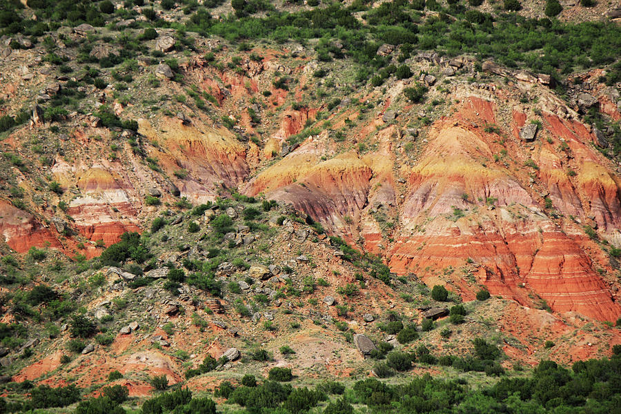 Colors Of The Canyon Photograph