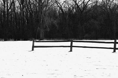 Colors Of Winter 1 Photograph by Eduardo Hugo