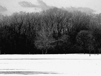Colors Of Winter 3 Photograph by Eduardo Hugo