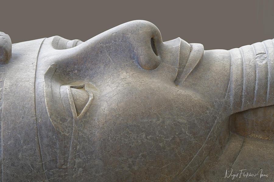 Colossal Smile by Nigel Fletcher-Jones
