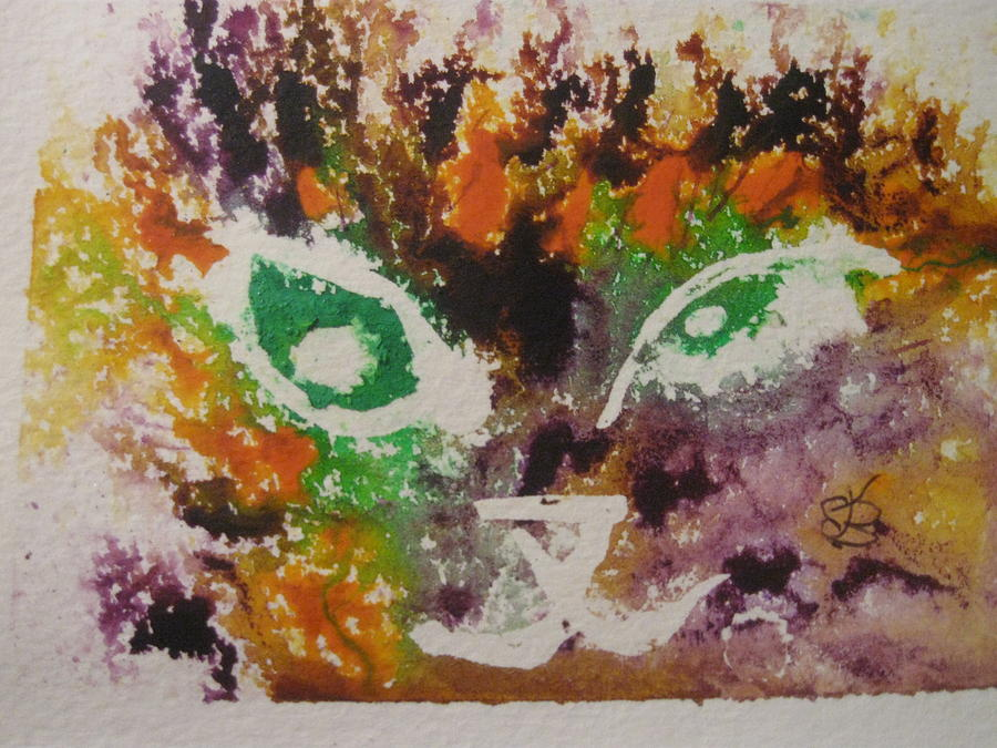 colourful cat face by AJ Brown