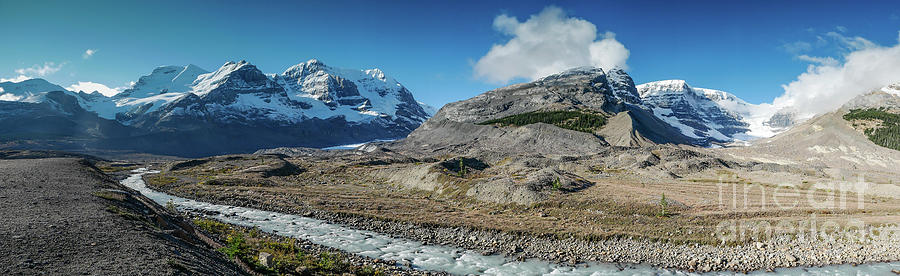 Columbia Icefields by Patricia Gould