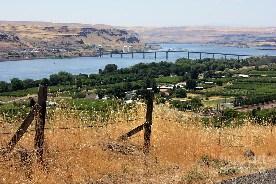 River Photograph - Columbia River - Biggs And Maryhill State Park by Carol Groenen
