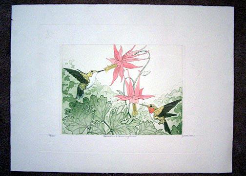 Columbine Painting - Columbine And Hummingbirds by Judith Hall