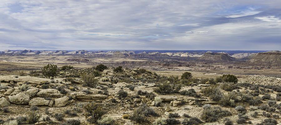 Utah Photograph - Comb Ridge by Mike Herdering