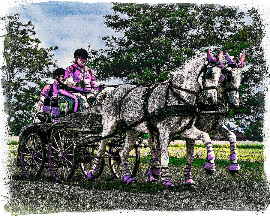 Animal Digital Art - Combined Driving by Janice OConnor
