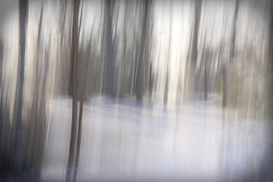 Snow Photograph - Come Away With Me by Margaret Denny
