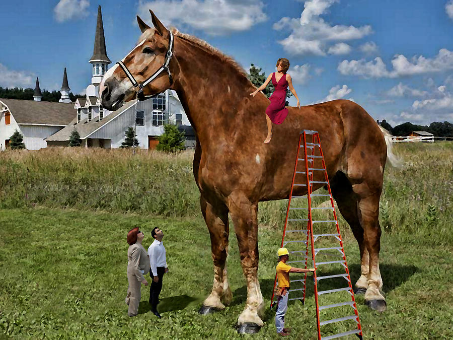 Image result for high horse