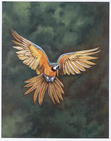 Come Fly With Me Painting by Diane Deason