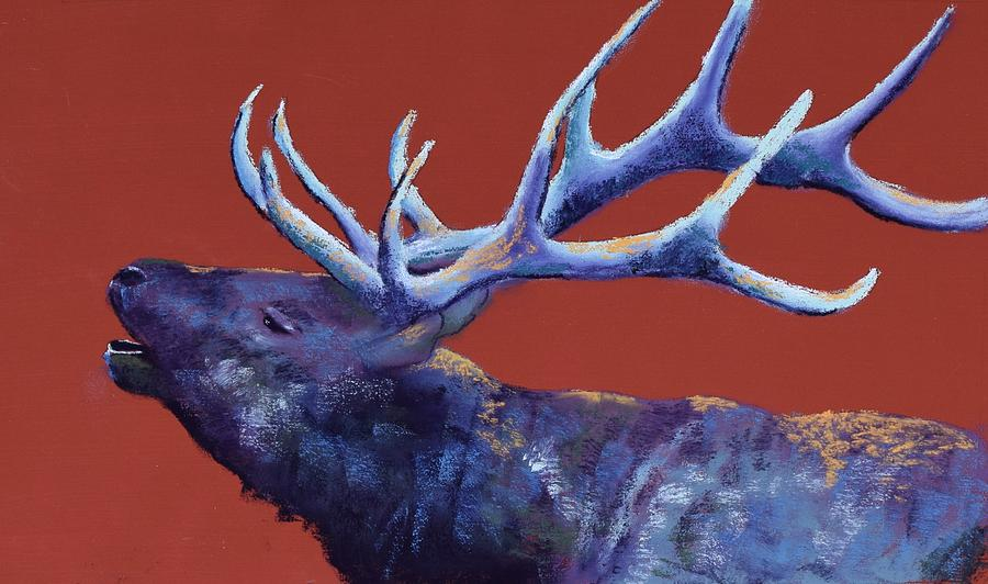 Bull Elk Painting - Come To Me by Celene Terry