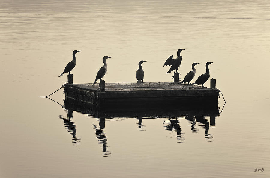 Boat Photograph - Comerants And Dock Taunton River by David Gordon