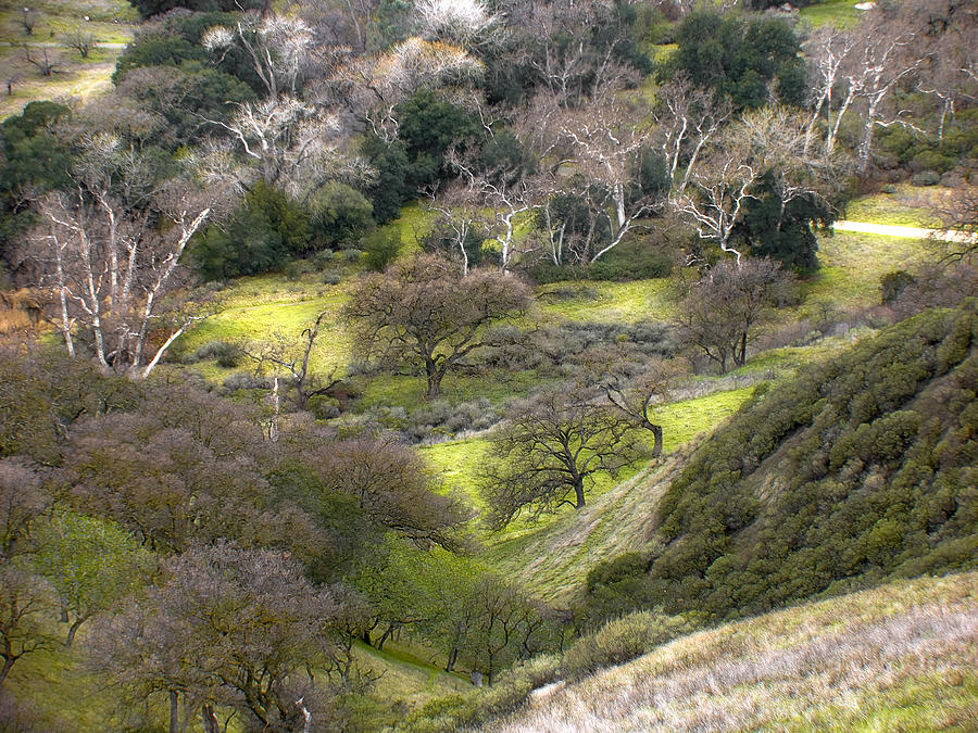 Landscapes Photograph - Coming Down The Hill by Karen  W Meyer