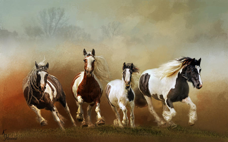 Coming In by Kimberly Stevens