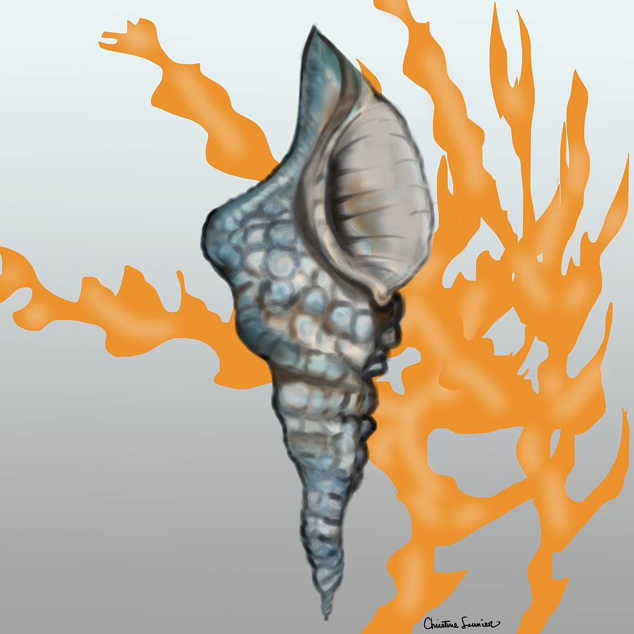 Coming Out Shell by Christine Fournier