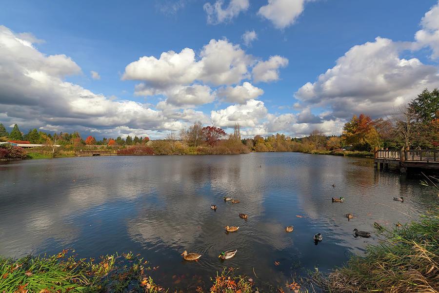 Beaverton Photograph - Commonwealth Lake Park in Beaverton Oregon by David Gn