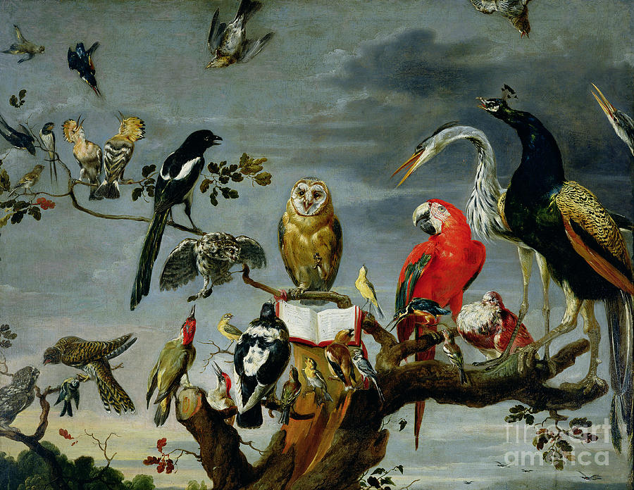 Concert Painting - Concert of Birds by Frans Snijders